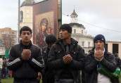 """Иммигранты стали """"своими"""""""
